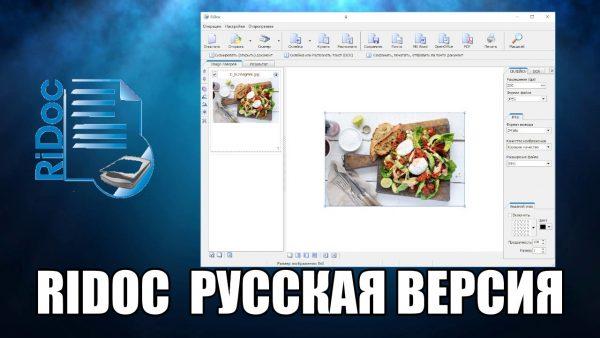 Обзор программы RiDoc на русском языке