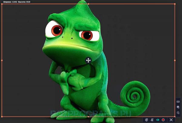 Movavi Video Suite русская версия для Windows 10, 7, 8, Xp, Vista