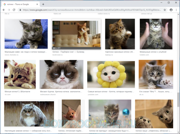 Google Chrome последняя версия