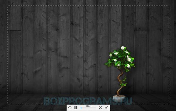 Скриншотер русская версия для Windows 10, 7, 8, Xp, Vista