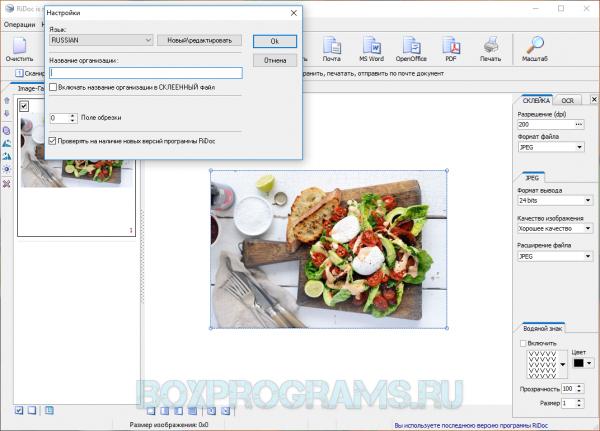 RiDoc для Windows 10, 7, 8, XP, Vista