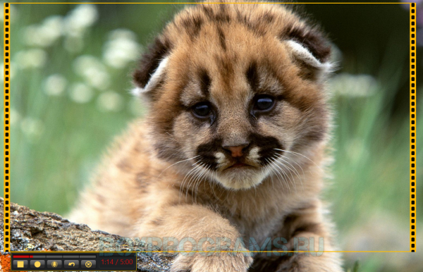 Jing русская версия для Windows 10, 7, 8, Xp, Vista