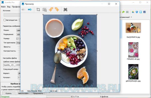 Scanitto Pro русская версия для Windows 10, 7, 8, XP, Vista