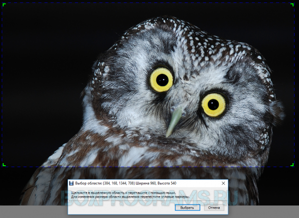 Debut Video Capture русская версия для Windows 10, 7, 8, Xp, Vista
