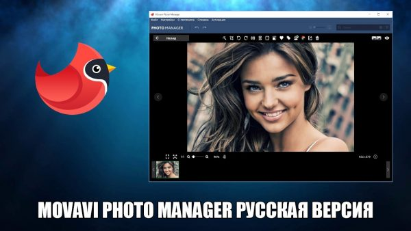 Обзор программы Movavi Photo Manager на русском языке