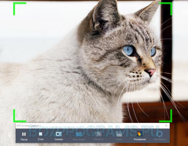 AVS Video Editor на ПК
